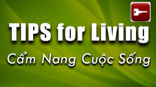 Viet Channels - Watch The Vietnamese TV Channels Live with DVR and VOD